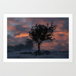 Frosty Sunrise At Chasewater Country Park Art Print