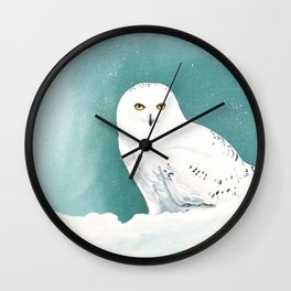 Arctic Eyes Wall Clock