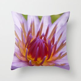 Nymphaea 'Rhonda Kay' IV Throw Pillow