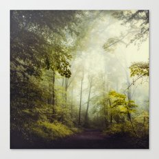 Glorious Woods Canvas Print