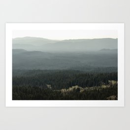 Oregon Mountain Forest Art Print