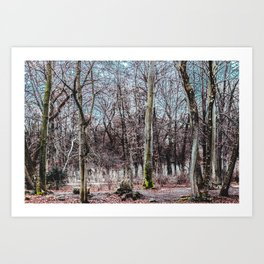 Red leaves and freckles. Can I call you redheads, dear trees? Art Print