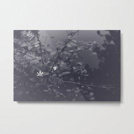 By the pond, Before Dark Metal Print