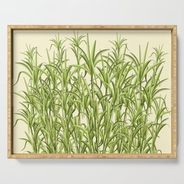 Sugar Cane Exotic Plant Pattern Serving Tray