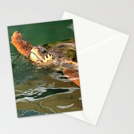 Hands Up For A Plastic Free Ocean Loggerhead Turtle Stationery Cards