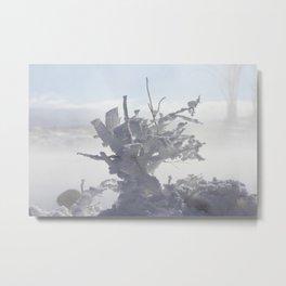 Ice Metal Print