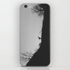 Cortez Deer iPhone & iPod Skin