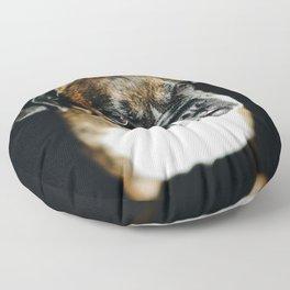 Boxer Dog Floor Pillow