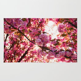 Colorfull spring Rug