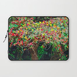 big tree with green yellow and red leaves Laptop Sleeve
