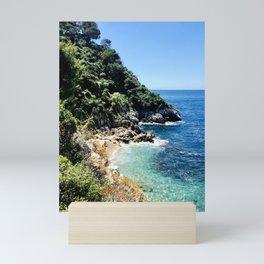Secret Beach Mini Art Print