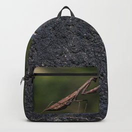 Praying Mantis of the Great Wall Backpack