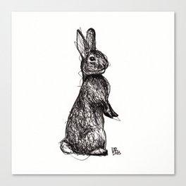 Woodland Creatures: Rabbit Canvas Print
