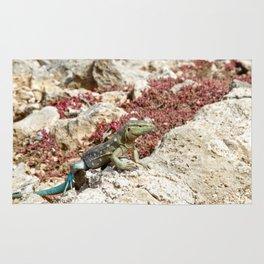 Blue Whiptail Lizard Rug