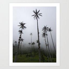 Cocora Valley Wax Palms Art Print
