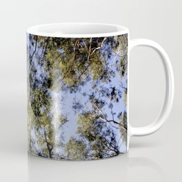 Eucalyptus Tree Canopy Coffee Mug