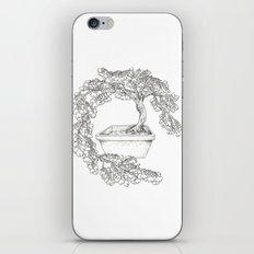 Ginkgo Tree iPhone & iPod Skin