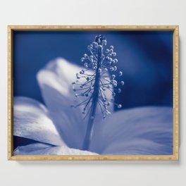 Enchanting Moments - Pua Aloalo - Koki'o Ke'oke'o - Hibiscus Arnottianus - Hawaiian White Hibiscus Serving Tray