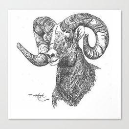 full curl Canvas Print
