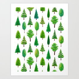 Branching Out - Evergreen Tree Forest on White Art Print