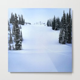 Fresh morning powder Metal Print