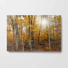 Fall Feels Metal Print