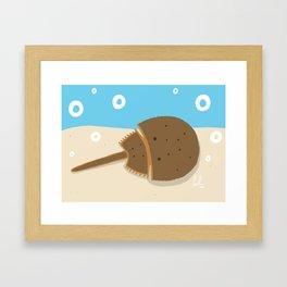 Horseshoe Crab Framed Art Print