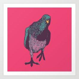 Pop Pigeon Art Print