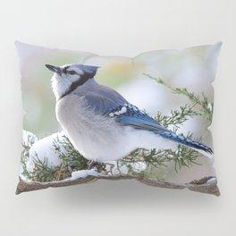 Look Skyward Blue Jay Pillow Sham