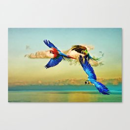 Exotic Macaws Canvas Print