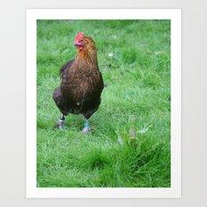 Handsome Chicken 2 Art Print