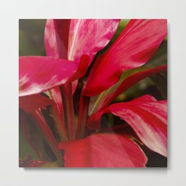 Breathtakingly Bright Ruby Red Leaves Metal Print
