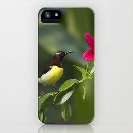 Purple Sunbrid iPhone Case