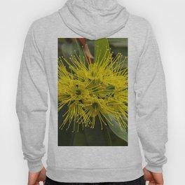 Golden Penda Flowers Hoody