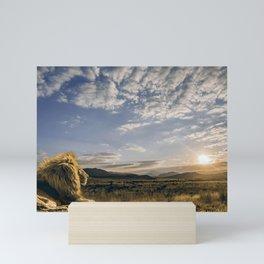 Majestic Beautiful Male African Lion Chilling In Desert At Romantic Sunset Ultra HD Mini Art Print