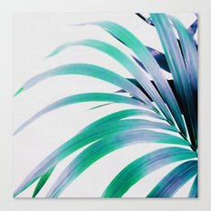 Colored Palm Leaf Canvas Print