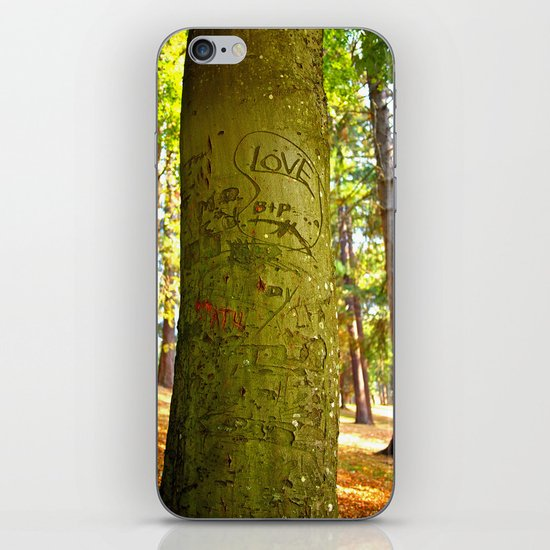 Autumn love iPhone & iPod Skin
