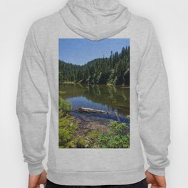 Picture Alaska USA Summit Lake Summer Spruce Nature Forests forest Hoody