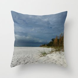 Winter Beauty at The Beachside Throw Pillow