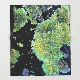 Shield Lichen Throw Blanket