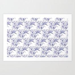 Lilium Speciosum (white) Art Print