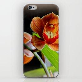 Cinnamon Iced T iPhone Skin