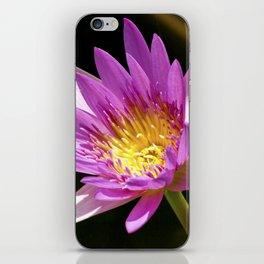 Pink Waterlily - Vizcaya iPhone Skin