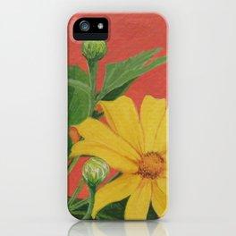 Winter blooming sun flower iPhone Case