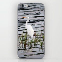 Egret Patiently Waiting iPhone Skin