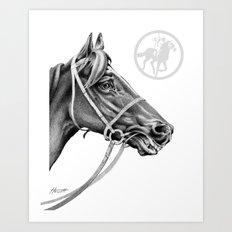 Veloso Racehorse NZ Art Print
