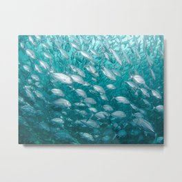 marine life #society6 #decor #buyart Metal Print
