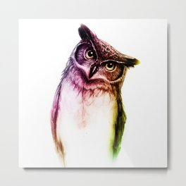 The wise Mr. Owl Metal Print