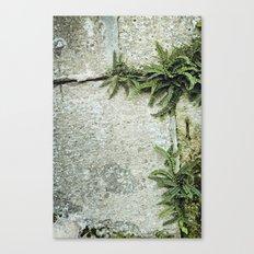 echapée de vert Canvas Print