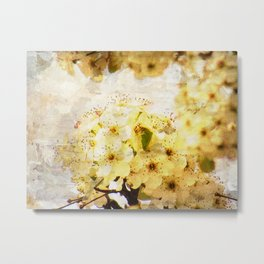 White Spring Flower Cottage Chic Art A377 Metal Print